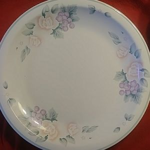 Pfaltzgraff 6 dinner plates. Coral Garden